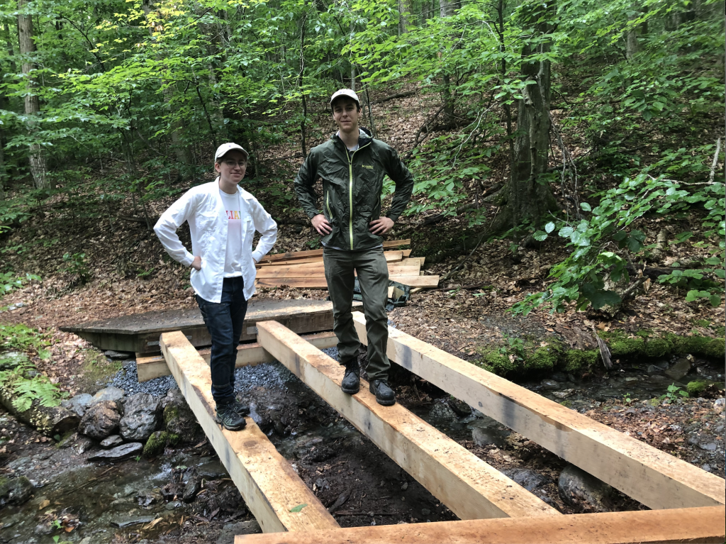 Two people standing on beams in the woods